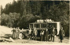 autobuz sacele